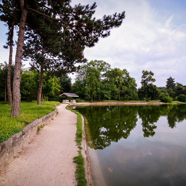 Le long des rives - Bois de boulogne