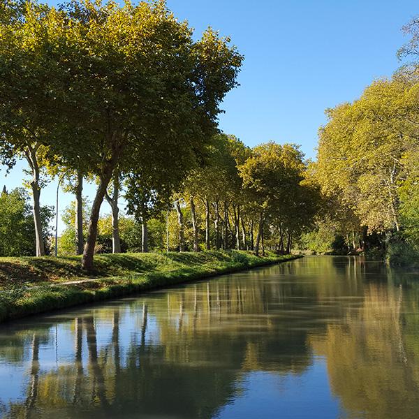 Paysages natures à Carcassonne